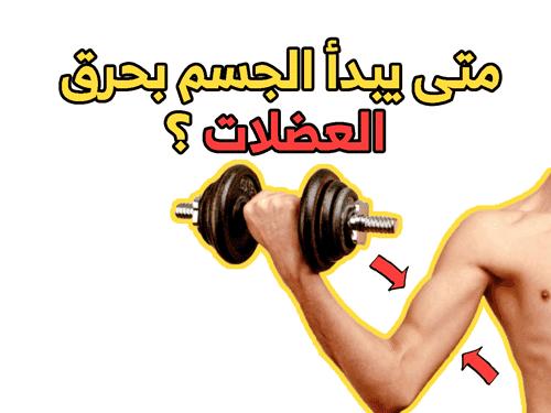 متى يبدأ الجسم بحرق العضلات ؟