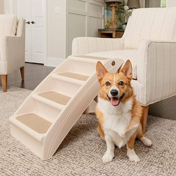 dog fixed ramp