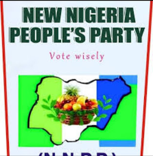 NNPP Chairman bags Ogun youth man of the year
