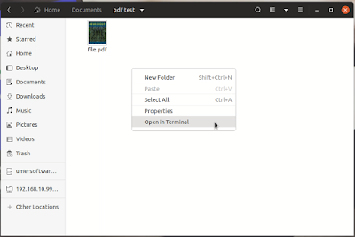How to use pdftoppm in Ubuntu?