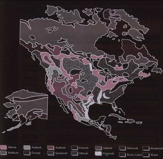 Distribution of Black Cotton ( Vertisols )Soil in North America