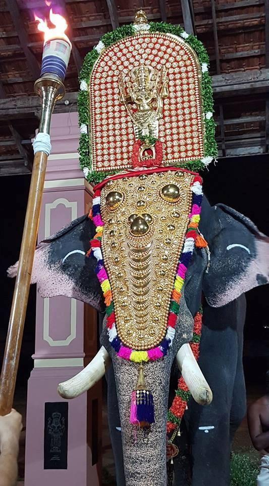 Peruvanam Pooram