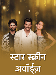 Star Screen Awards Main Event Full Show 2019 480p HD 400MB
