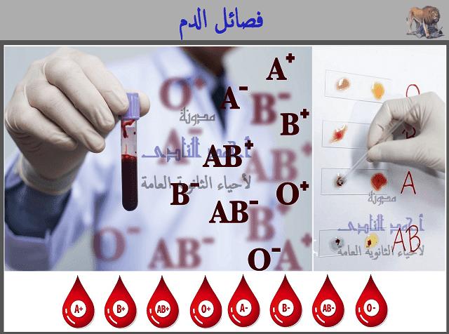 فصائل الدم - الكروموسوم رقم 9 - مدونة  أحمد النادى لأحياء الثانوية العامة