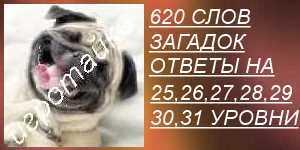 620 слов загадок все ответы на 25, 26, 27, 28, 29, 30, 31 уровни