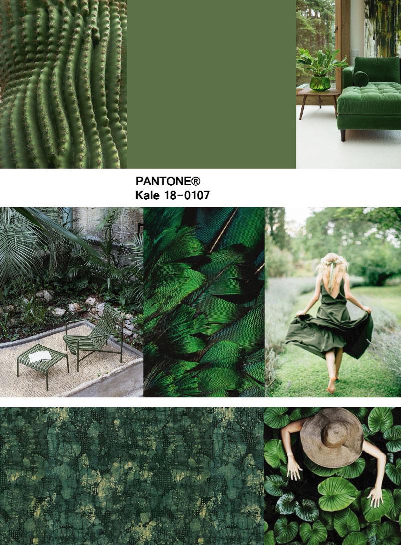 moodboard green kale