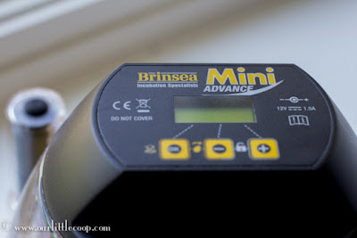 Our Little Coop Brinsea Mini Advance incubator review