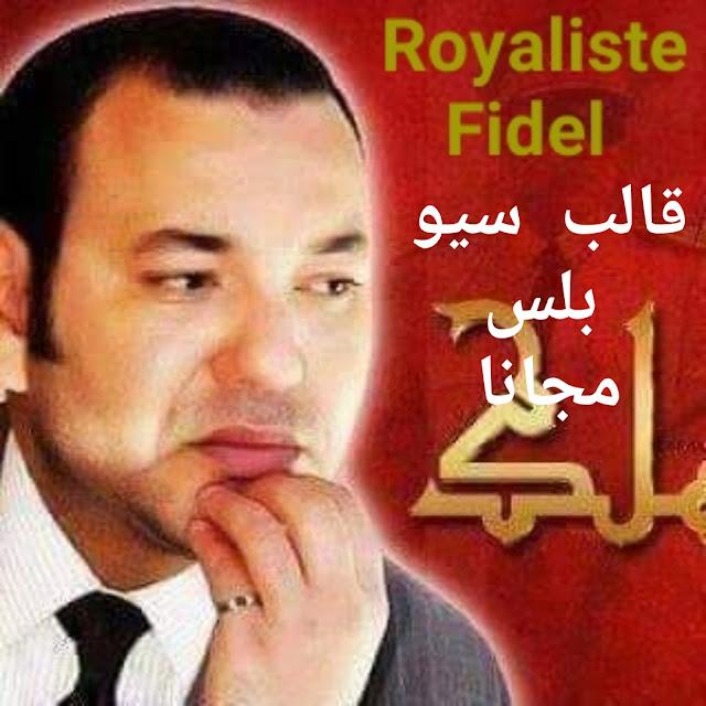 قالب سيو بلس V5 آخر الاصدار الخامس مجانا قالب موقع Royaliste Fidel