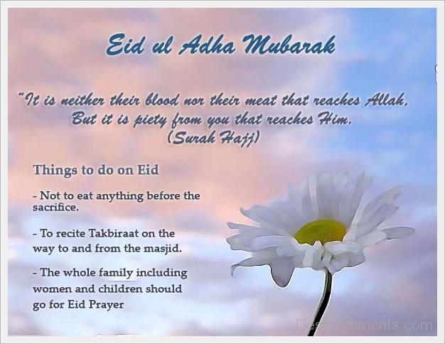 gambar sms ucapan selamat hari raya idul adha sms message bahasa inggris