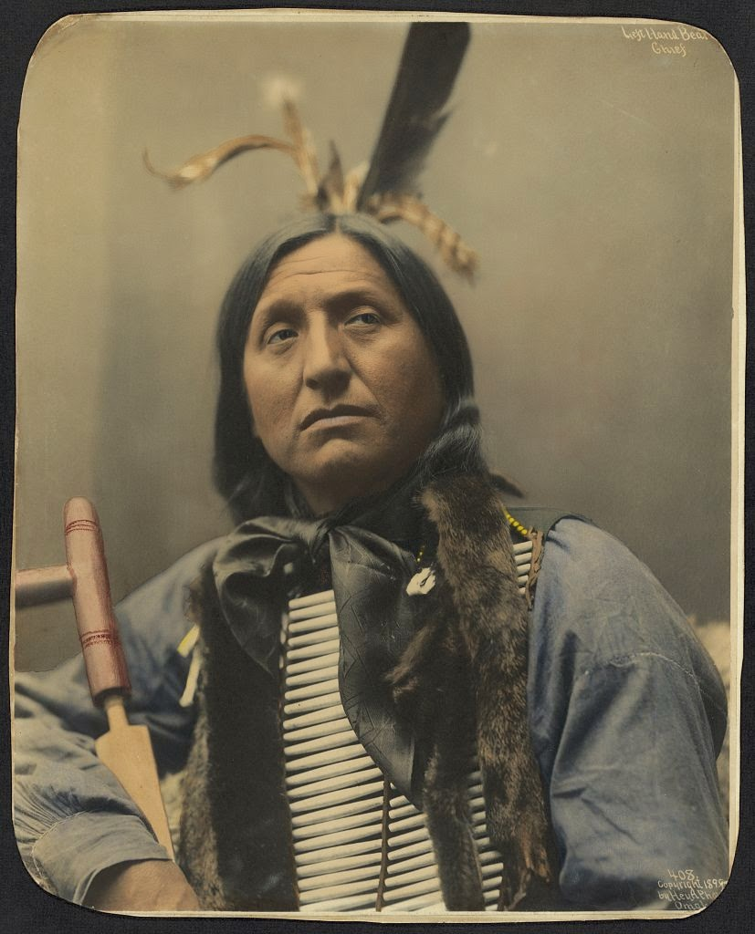Native American Healing Herbs Plants: White Wolf : 20 Remarkable Hand-Colored Portraits Of