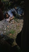 Violência homem de 29 anos é assassinado em Camaçari.