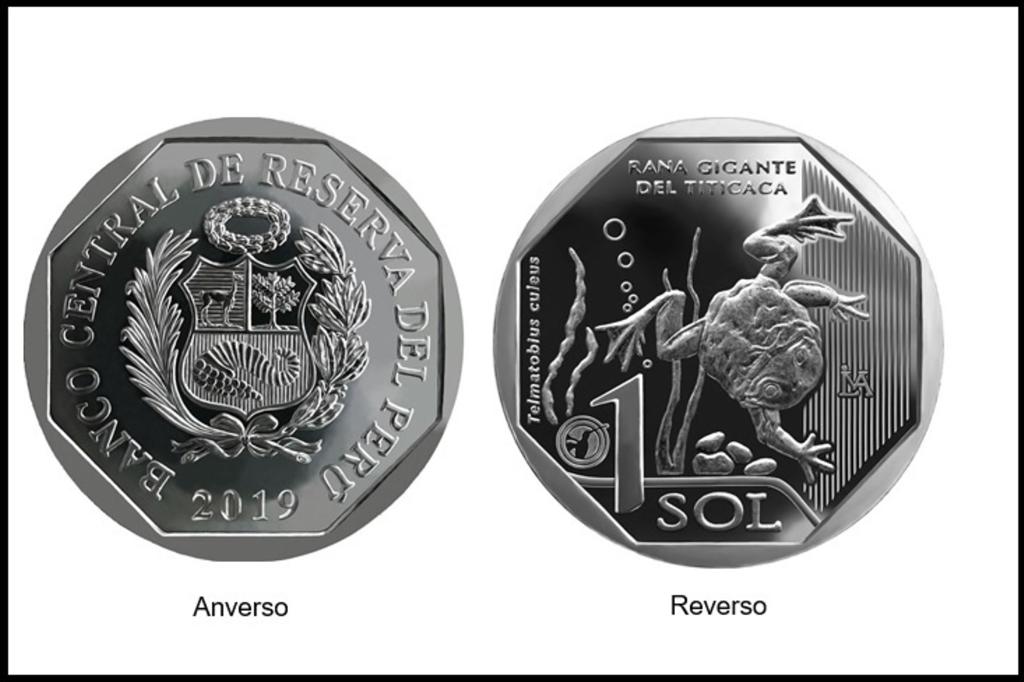 moneda alusiva rana gigante del titicaca