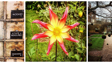 Una de Instagram: Chelsea Physic Garden