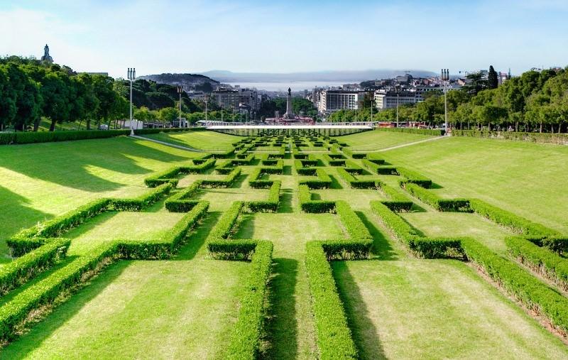 Relvado em Lisboa