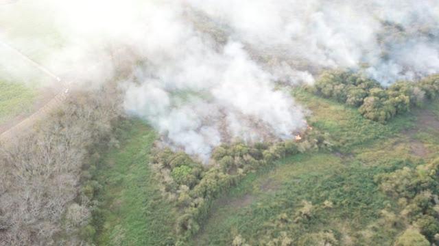 Incêndio no Parque Estadual do Aguapeí mobiliza Corpo de Bombeiros pelo 5º dia consecutivo