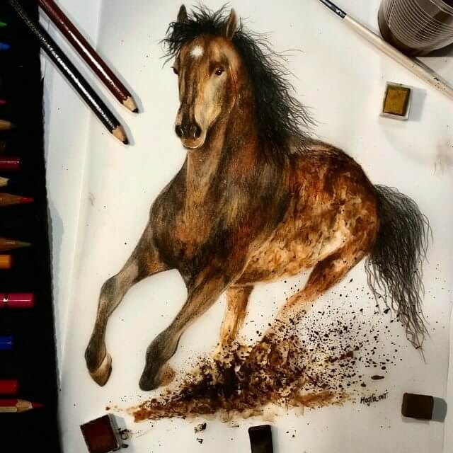 04-Horse-Majla-Colorful-Precise-and-Realistic-Animal-Drawings-www-designstack-co