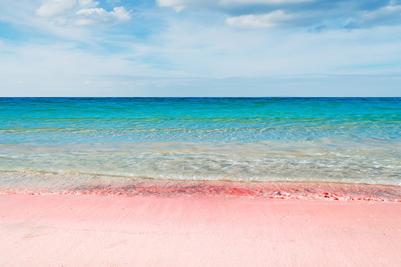Pink Sand Beach Bahamas All Inclusive The Best Beaches In World