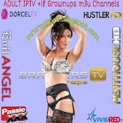 M3U IPTV Channels ADULT Lists Updated 24/07/2021