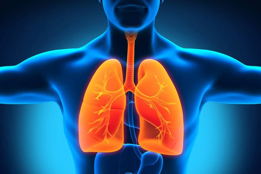 Purifica pulmones