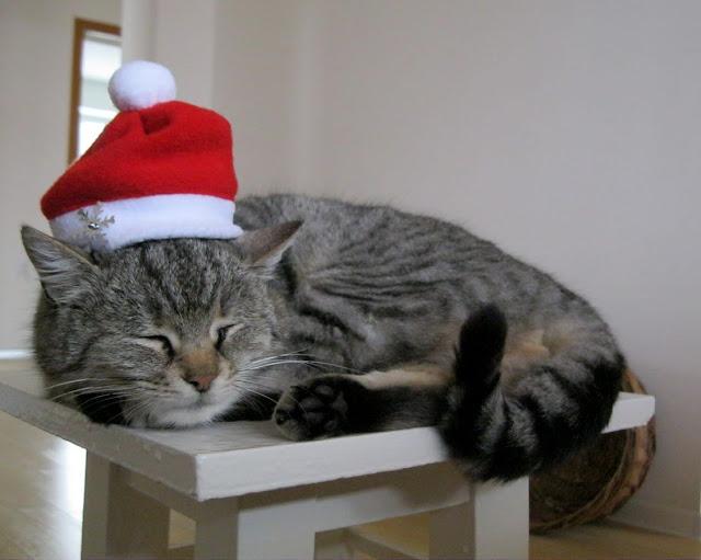 Дед Мороз Матута