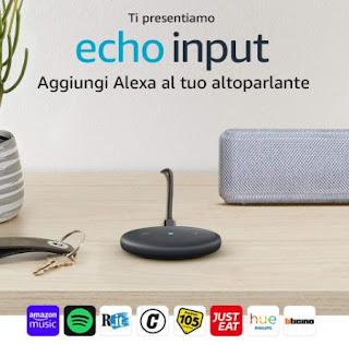Echo Input