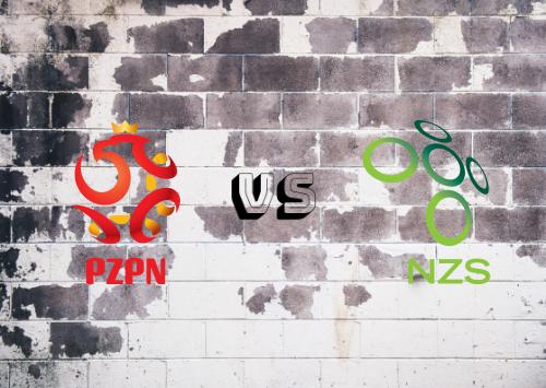 Polonia vs Eslovenia  Resumen