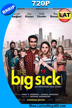 The Big Sick (2017) Latino HD 720p ()