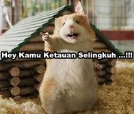 Yes...!!! Ini Dia Cara Cepat Memajukan Peternakan di Indonesia