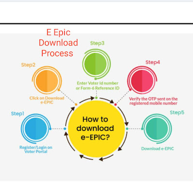 How To Download E-EPIC From Voter portal