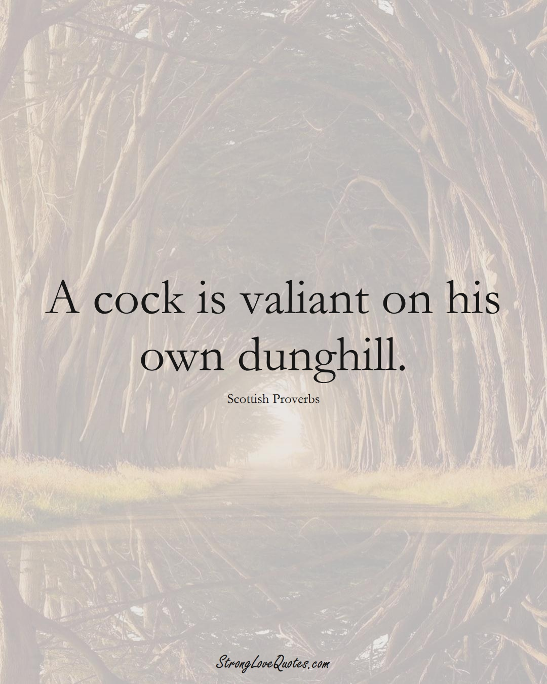 A cock is valiant on his own dunghill. (Scottish Sayings);  #EuropeanSayings