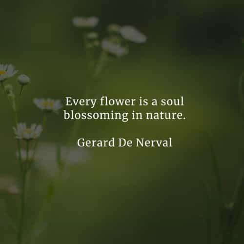 Nature quotes which inspire to love and value its beauty