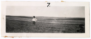 Lot 045 v1p15.7, View of Henry Syverud standing in a field of flax in full bloom