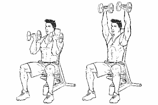 2. Dumbbell Arnold Press