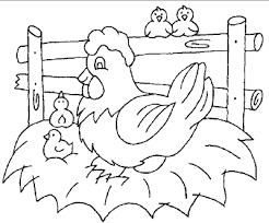 Printable Chicken Coloring Sheet Animals