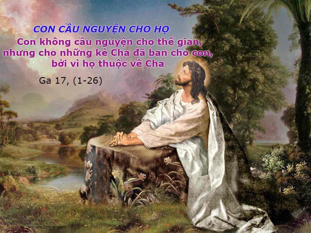 """""""Anh em hãy yêu thương nhau như Thầy đã yêu thương anh em"""" (Ga 15, 9-17)"""