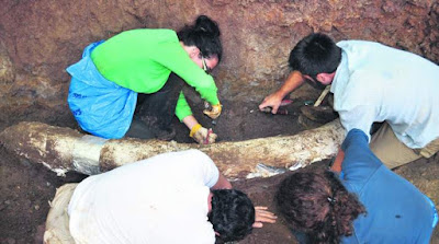 Στα «σκαριά» το πρώτο Παλαιοντολογικό Μουσείο της Πελοποννήσου