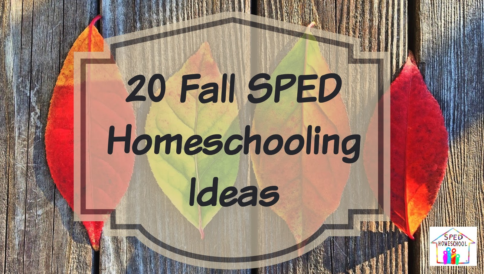 20 Fall Special Education Homeschooling Activities