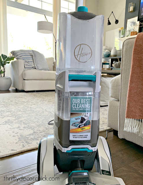 Affordable carpet cleaner that works