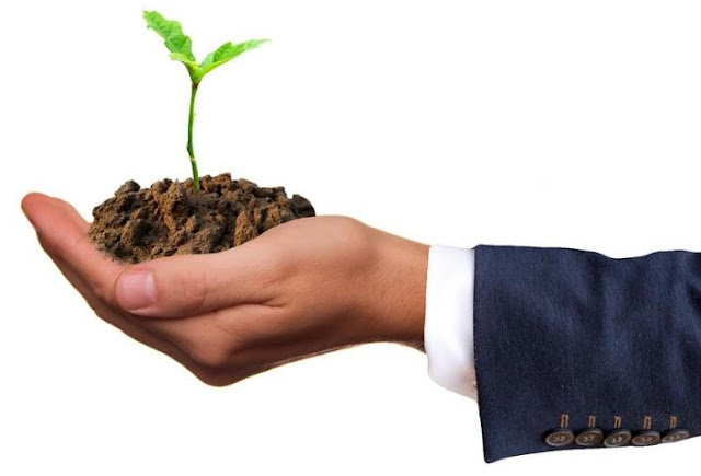 why become eco-minded entrepreneur increase customer loyalty ecofriendly go green business