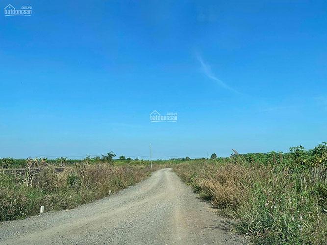 Đất sào Đông Hòa