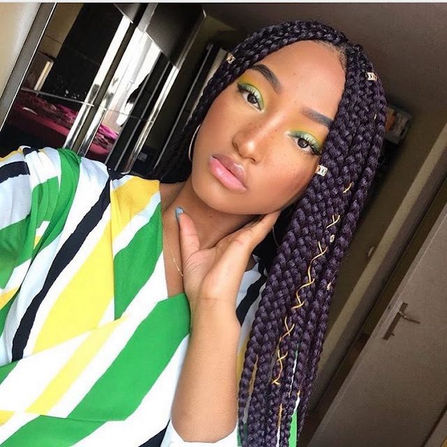 2019 Amazing and Beautiful Braids You Can Copy