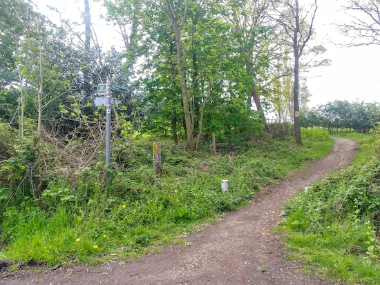 Shenley restricted bridleway 45 leaving Woodhall Lane and heading S