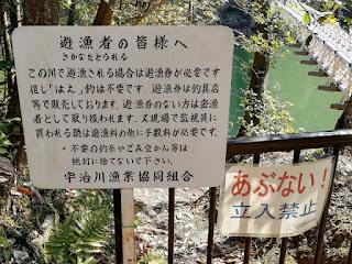 宇治川看板 はえ釣り無料