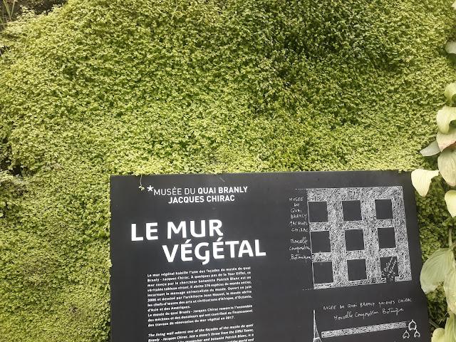La mur vegetal