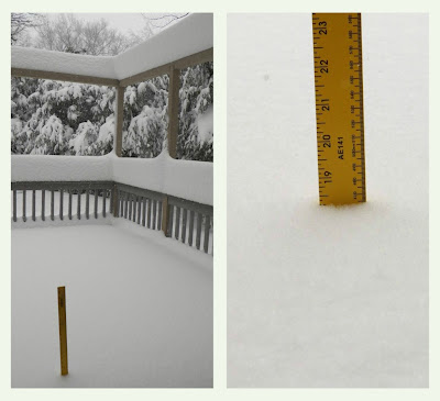 Ruler stuck in snow on a porch