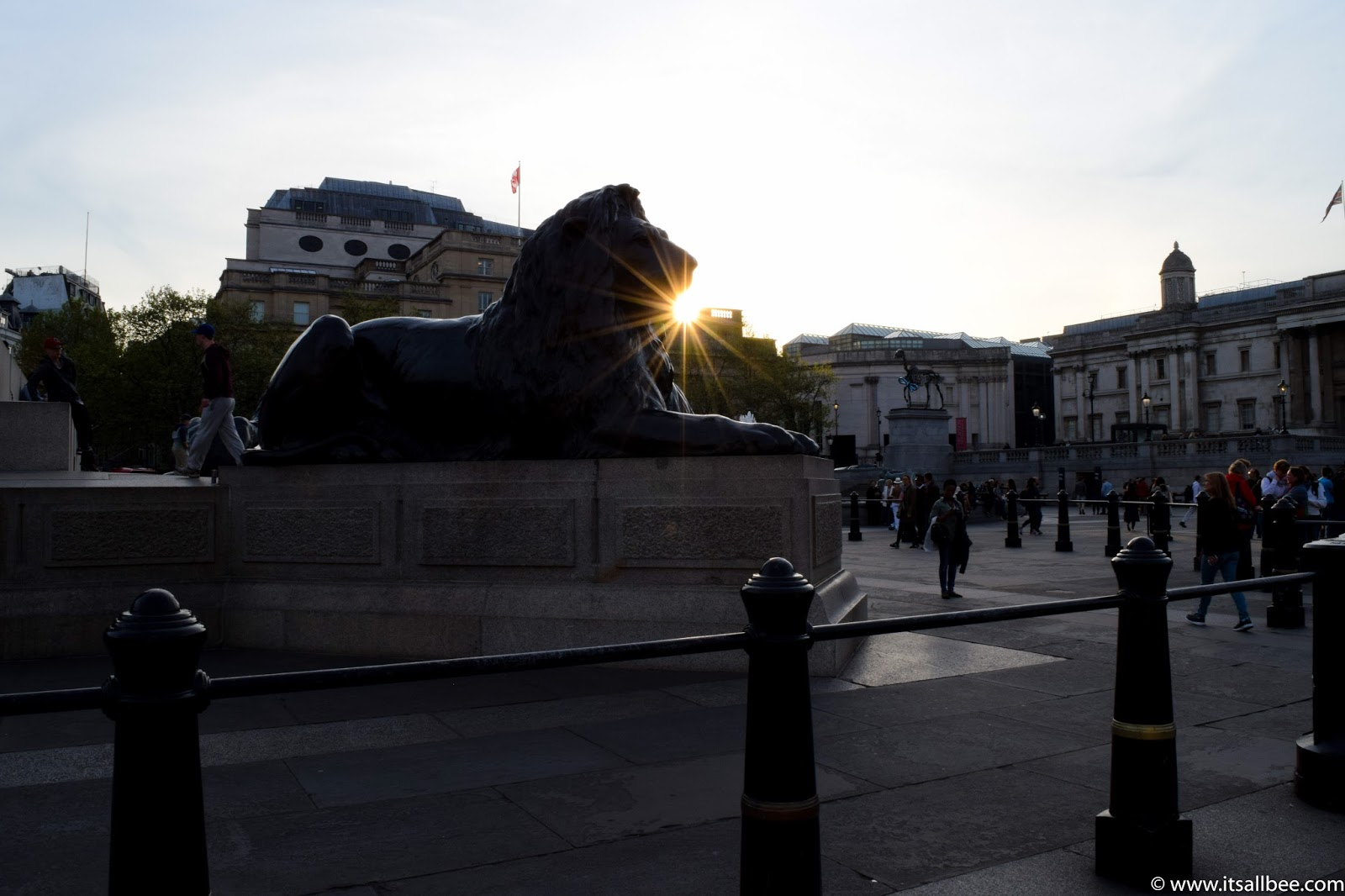 trafalgar square lions, trafalgar square london hotels, trafalgar square restaurants