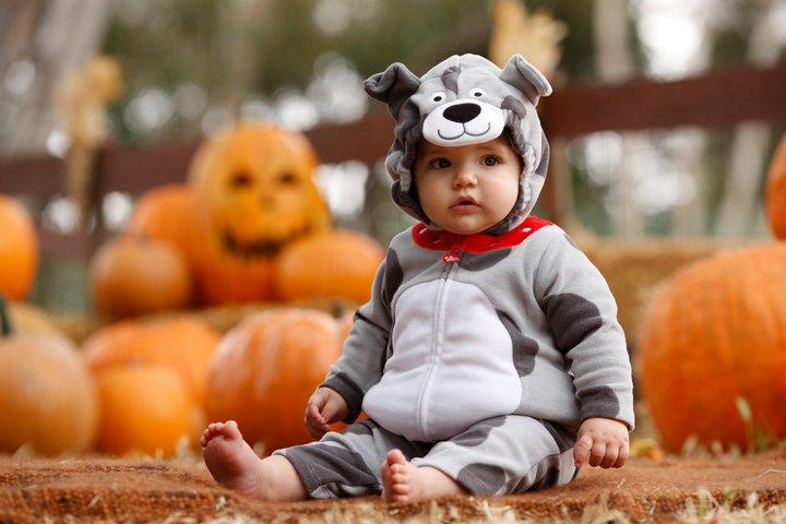 tuesday july 26 2016  sc 1 st  The Halloween - aaasne & Carters Baby Halloween Costumes - The Halloween