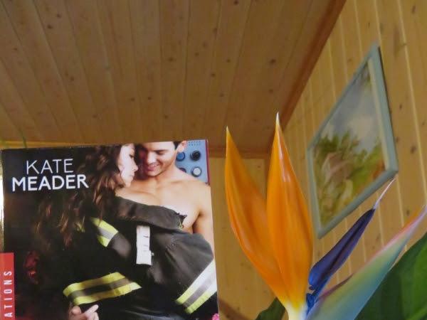 Hot in Chicago, tome 2 : Retour de flamme de Kate Meader