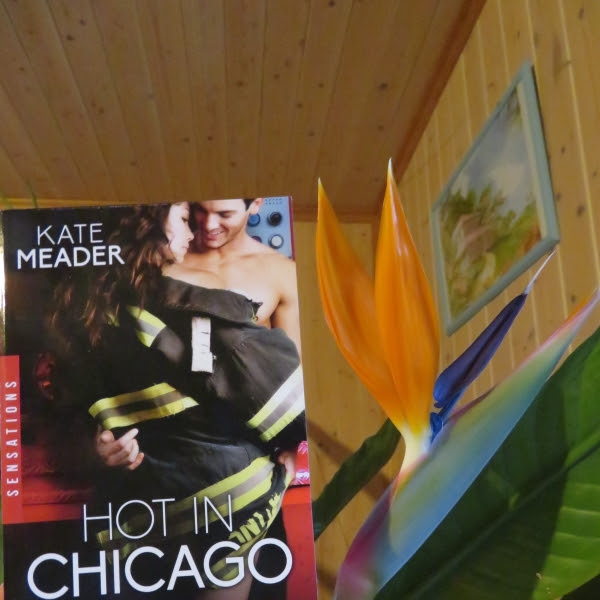 Hot in Chicago, tome 2 : Retour de flamme de Kate Meader