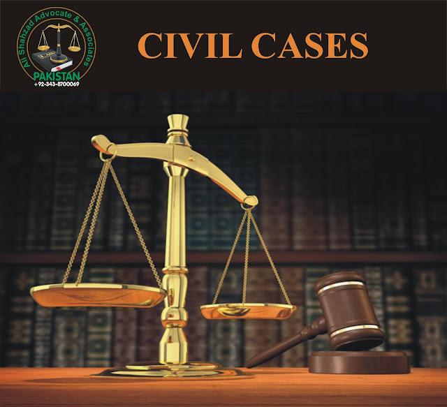 civil cases lawyer